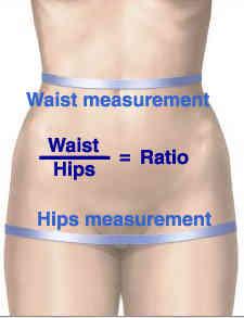 waist-hips-ratio