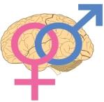 612px-Sapioheterosexuality_Symbol