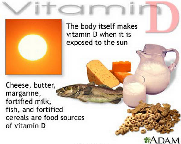 The ABCs of Vitamin Deficiency: Why Human Have Such a Needy Diet