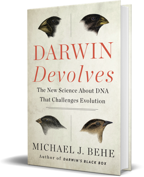 "Darwin Devolves: ""Devolution"" is Not a Thing"